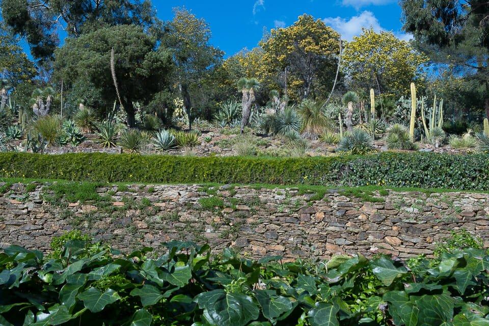 Domaine du Rayol - Le Jardin des Méditerranées
