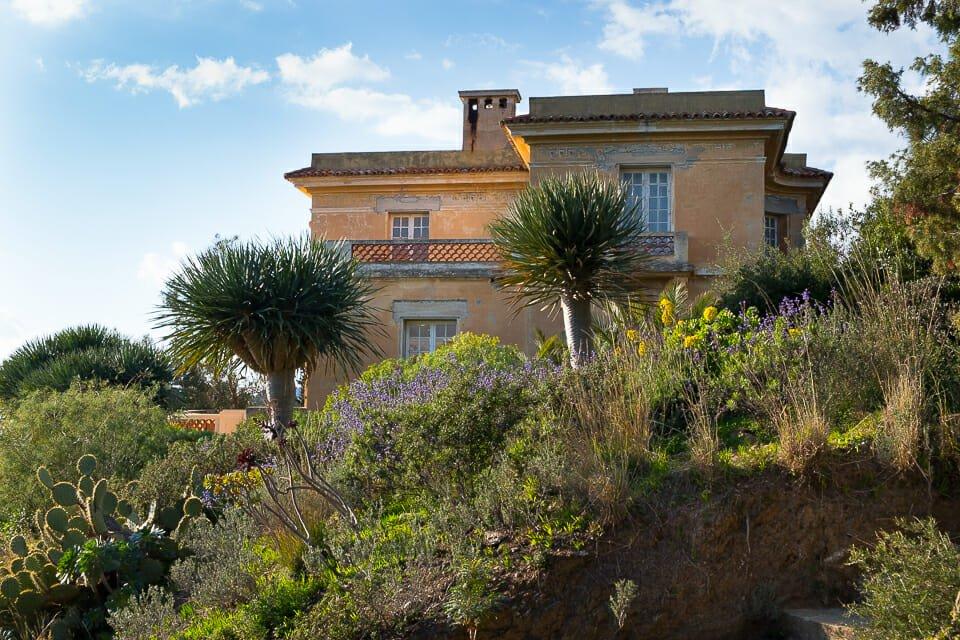 Domaine du rayol le jardin des m diterran es jardins - Domaine du rayol le jardin des mediterranees ...