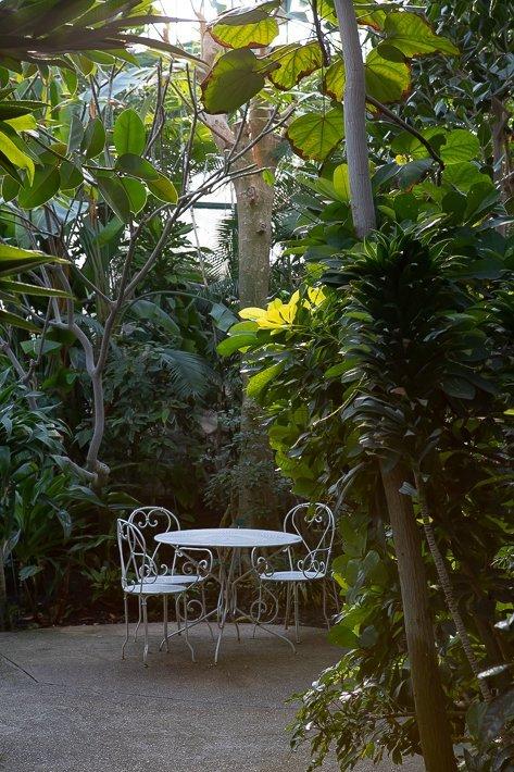 jardin-des-serres-d-auteuil-29